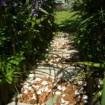 cropped-jardin1.jpg